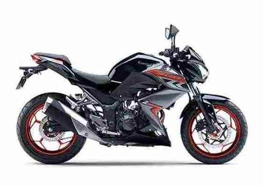 Nova Kawasaki Z300 2019-